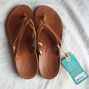 NWT Brown Leather Sahara Sandal
